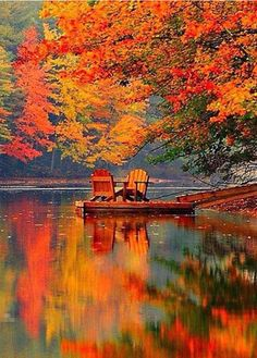 Lake Shafer in Monticello, Indiana in the Fall