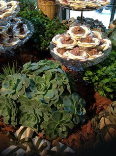 Decoração da Mesa de Doces com Suculentas - Buffet  Brilat - No Wedding Outlet