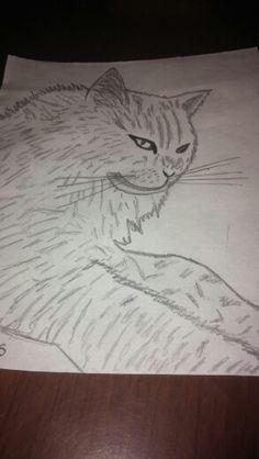 Dibujo mascota!!!