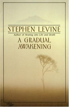 A Gradual Awakening by Stephen Levine. Poet and meditation teacher Levine writes simply and gently about his own personal experiences with and insights into vipassana meditation. An inspiring book for anyone interested in deep personal growth.