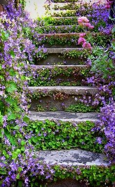 Pretty Garden Stairs (by Jaqueline Martins on Flickr)