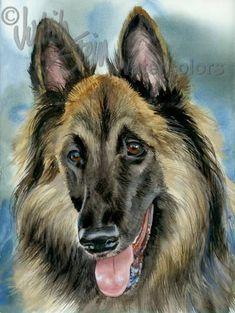 BELGA TERVUERENSE perro acuarela acuarela Giclee Print