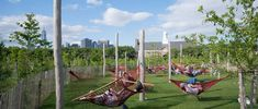 Image result for Governors Island