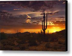 Dreamy Desert Skies  Canvas Print / Canvas Art By Saija  Lehtonen