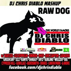 Dj Chris Diablo - Raw Dog (Mashup Mix)'s cover image