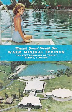 Warm Mineral Springs Venice FL Aerial View | Back of postcar… | Flickr