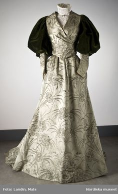 Dramatic Dinner Dress from 1895