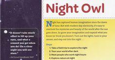 Night Owl.pdf