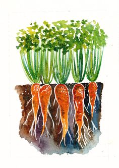 Hey, I found this really awesome Etsy listing at https://www.etsy.com/listing/225960945/carrots-watercolor-original-painting