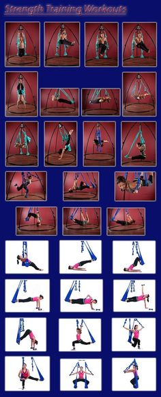 AmazonSmile : Agptek Aerial Yoga Supplies Swing Inversion Trapeze Series Yoga Class Accessories Like Yoga Straps and Sling Hammock (Blue) : Sports & Outdoors