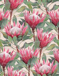 'Painted King Proteas on Cream ' Art Print by micklyn Protea Art, Flor Protea, Protea Flower, Illustration Blume, Botanical Illustration, Framed Art Prints, Canvas Prints, Australian Native Flowers, Cream Art
