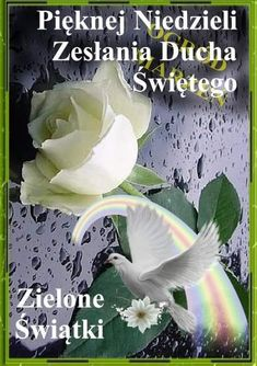 Plants, Polish Sayings, Pentecost, Plant, Planting, Planets