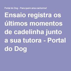 Ensaio registra os últimos momentos de cadelinha junto a sua tutora - Portal do Dog