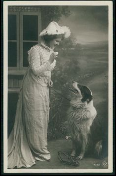 Edwardian lady teach her Collie Dog to seat original old photo postcard Border Collie Pictures, Border Collie Art, Animal Pictures, Cute Pictures, Scotch Collie, English Shepherd, Collie Dog, Vintage Dog, Old Dogs