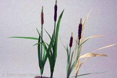 How to Make More than 40 Paper Plants and Flowers: Make Scale Miniature Bull Rushes or Cattails
