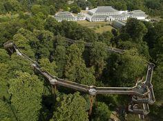 Treetop walkway, Kew Gardens    Posted by www.futons-direct.co.uk