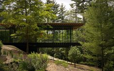 Wood and Glass House  . . . what a great idea if your lot looks like this.