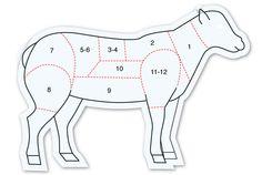 Le tableau cuisson de l'agneau