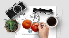 Tomato : Photo, Vector, Black and White Outline