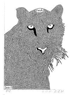 David Andrew Wiebe – Maze