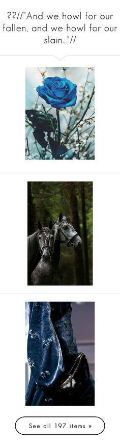 """""""❄️//""""And we howl for our fallen, and we howl for our slain...""""//"""" by kenny-ks ❤ liked on Polyvore featuring animals, horses, backgrounds, fantasy, pics, photos, pictures, armor, models and other"""