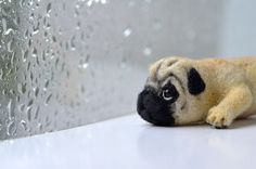 Needle Felted pug | Needle felted pug by Fenekdolls on Etsy, $60.00