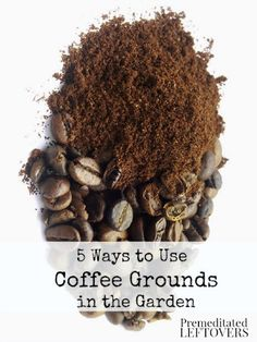 5 Ways to Use Coffee Grounds in Your Garden.Make a worm farm, Add it to your compost pile, Get rid of pests and bugs, Fertilize your plants, and coffee grounds can kill fungus. Coffee Grounds Garden, Uses For Coffee Grounds, Organic Gardening, Gardening Tips, Kitchen Gardening, Vegetable Gardening, Bokashi, Dream Garden, Lawn And Garden