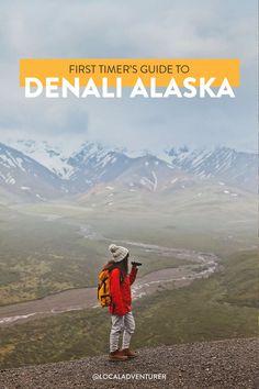 17 Unforgettable Things to Do in Denali National Park Alaska // Local Adventurer Alaska National Parks, Glacier Bay National Park, Katmai National Park, Parc National, Yellowstone National Park, Alaska Travel, Alaska Cruise, Travel Usa, Travel Tips