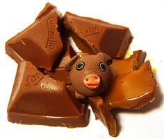 a piggy in the middle by Darwin Bell, via Flickr