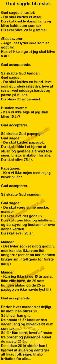 Gud sagde til æslet. Wise Qoutes, Funny Qoutes, Funny Texts, Quotes, Cool Words, Wise Words, Joke Stories, One Liner, Mind Blown