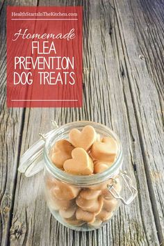 Homemade Dog Treats that Prevent Fleas …and your dog will LOVE them! Made with…