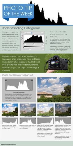 Understanding Histograms / Manual Metering #photography #histogram