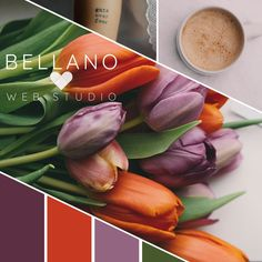 Loving this tulip image so much that I had to create color palette/mood board with it. The image (all three actually) is from @unsplash and Unsplash is celebrating their 4th birthday today and I'm wishing them a huge HAPPY BIRTHDAY!! And sending wishes for continued growth and success into the future. I've been a fan since the beginning I remember when I could actually scroll completely through the feed. Now there are so many amazingly beautiful images that would probably take days. So glad…