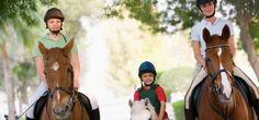 Florida Horseback Trail Rides - http://www.activexplore.com/activity/florida-horseback-trail-rides/