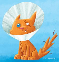 Cone Kitty is your new best friend.