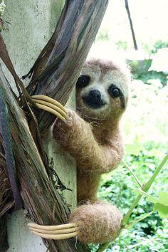 Needle felted Life size threetoed Sloth baby by pipspatterns