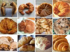Shar-Pei or Croissant?  I'm sorry, but these are just so funny . . . (via Lina D/BoredPanda)