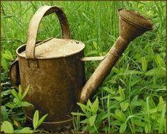 Watering your home garden