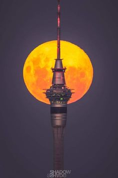 """""""Full Moon over Auckland, New Zealand, and Sky Tower, by Larryn Rae. Pink Moon, Space And Astronomy, Auckland, Full Moon, Cn Tower, New Zealand, Sky, Southern, Twitter"""