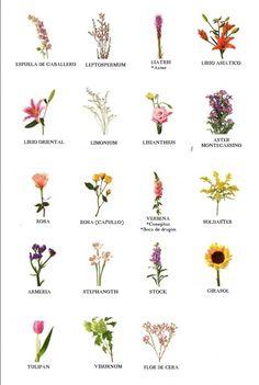 Nombre de flores
