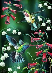 Animals Art - Humming Birds 2 by JQ Licensing
