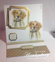 Book And Frame, Hunky Dory, Dog Cards, Little Books, Cat Life, Type 3, Theater, Card Making, Facebook