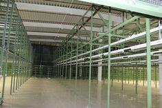 Hala metalica - AUTOLIV BRASOV | duna-steel.ro Toyota, Plants, Steel, Dune, Plant, Steel Grades, Planets, Iron