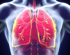 Signs Of Lung Cancer, Idiopathic Pulmonary Fibrosis, Coaching, Health Tips For Women, Diabetes Treatment, Lunges, Respiratory System, Health Remedies, Cure
