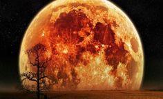 "A Super Lua de 14 de Novembro de 2016 Poderia Desencadear Terremotos ao Longo das ""Falhas"" Mais Frágeis Terra!!"