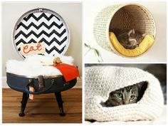 DIY Cat Beds – DIY Projects – ALL YOU | Deals, coupons, savings, sweepstakes and more…