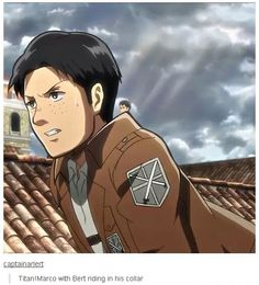 Attack on Titan / Shingeki no Kyojin || anime funny