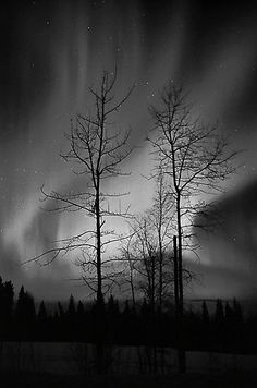 """""""Black and White Auroras (2012 views)"""" by peaceofthenorth"""