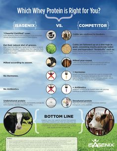 Learn the difference between Isagenix and other protein shake companies on the market. Understand the difference between conventional, factory farming and grass-fed cows.