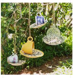 Bird feed ☺️